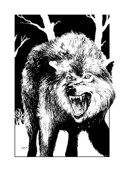 Aborea-Solo-027-Wolf